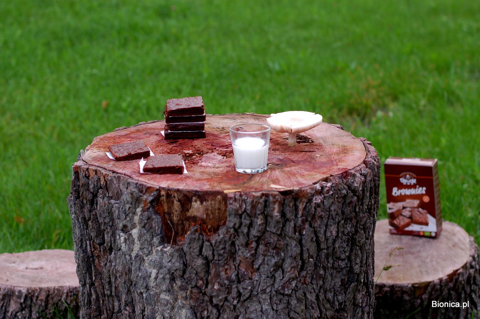 brownies Bauckhof